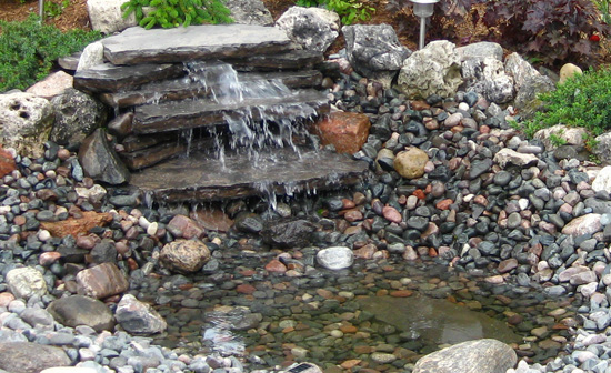Water feature for attracting birds