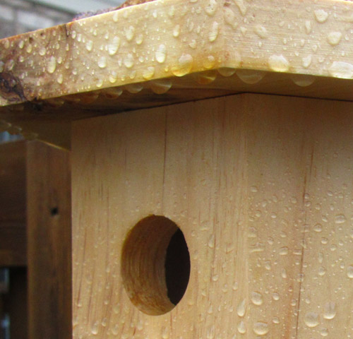 Preserving a birdhouse to make it waterproof