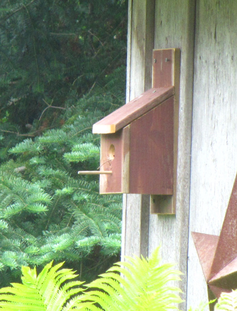 Birdhouse with large perch
