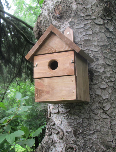 Is a cedar birdhouse toxic?
