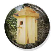 Hexagonal Birdhouse
